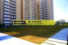 rent luxury apartment in gurgaon