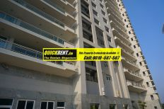 Apartments-For-Rent-in-DLF-Belaire029