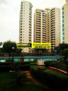 Apartments for Rent in Raheja Atlantis 18