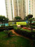 Apartments for Rent in Raheja Atlantis 21