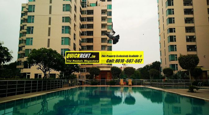 Raheja Atlantis for Rent