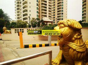 Apartments for Rent in Raheja Atlantis 42