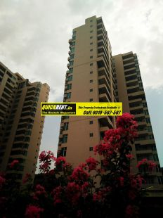 Apartments for Rent in Raheja Atlantis 48