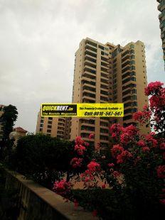 Apartments for Rent in Raheja Atlantis 49