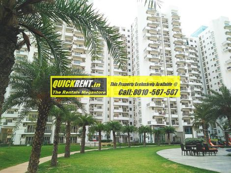 Emaar MGF Palm Drive Gurgaon for Rent 07