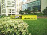 Emaar MGF Palm Drive Gurgaon Rent 06