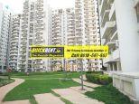 Palm Drive Gurgaon 08