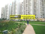 Palm Drive Gurgaon 10