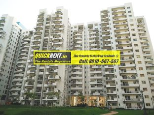 Palm Drive Gurgaon 12
