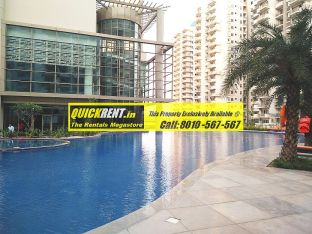 Palm Drive Gurgaon for Rent 08