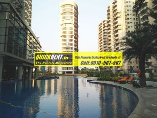 Palm Drive Gurgaon for Rent 13