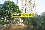 Westend Heights Gurgaon for Rent 006