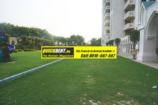 Westend Heights Gurgaon for Rent 012
