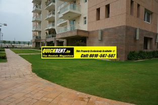 Rent Apartment in DLF Park Place 002