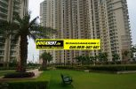 Rent Apartment in DLF Park Place004