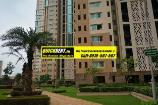 Rent Apartment in DLF Park Place006