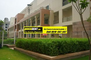 Rent Apartment in DLF Park Place022