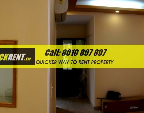 gurgaon orchid island for rent