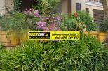Villas for Rent Palm Springs Gurgaon001