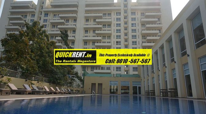 3 Bedroom Apartments for Rent in MGF Vilas