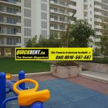 3 BHK Apartments for Rent in MGF Vilas 003