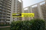 3 BHK Apartments for Rent in MGF Vilas 007