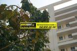 Rent Apartment in Gurgaon 005