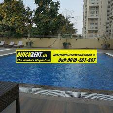Studio Apartments for Rent Gurgaon 001