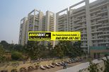 Studio Apartments for Rent Gurgaon 043