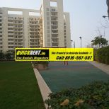 Studio Apartments for Rent in MGF Vilas 035