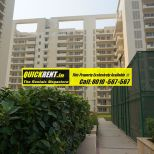 Studio Apartments for Rent in MGF Vilas 049