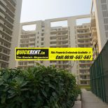 Studio Apartments for Rent in MGF Vilas 050