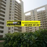 Studio Apartments for Rent in MGF Vilas 051