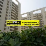 Studio Apartments for Rent in MGF Vilas 052