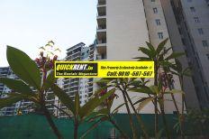 Apartment for Rent Belgravia 002