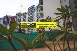 Apartment for Rent Belgravia 004