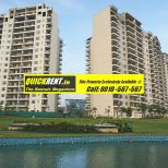 Belgravia Central Park 2 Gurgaon Rent 005