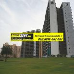 Belgravia Central Park 2 Gurgaon Rent 009