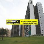 Belgravia Central Park 2 Gurgaon Rent 013