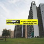 Belgravia Central Park 2 Gurgaon Rent 015