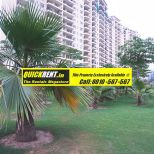 Belgravia Central Park Gurgaon Rent 023