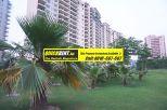 Belgravia Central Park Gurgaon Rent 024