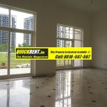 Belgravia for Rent Gurgaon 002