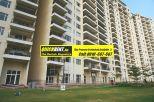Belgravia for Rent Gurgaon 017