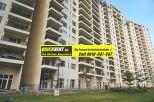 Belgravia for Rent Gurgaon 018