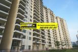 Belgravia for Rent Gurgaon 019