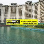Belgravia Gurgaon Rent 012