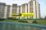 Belgravia Gurgaon Rent 013