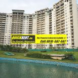 Belgravia Gurgaon Rent 013