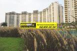 Rent Apartment in Belgravia 009